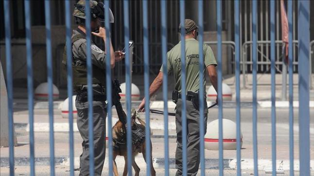 الاحتلال الإسرائيلي يركب بوابات إلكترونية في البلدة لقديمة والابواب المؤدية للمسجد الأقصى