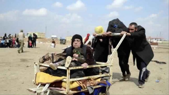 منظمات دولية تكشف عن اكبر موجة نزوح من الشطر الغربي لمدينة الموصل