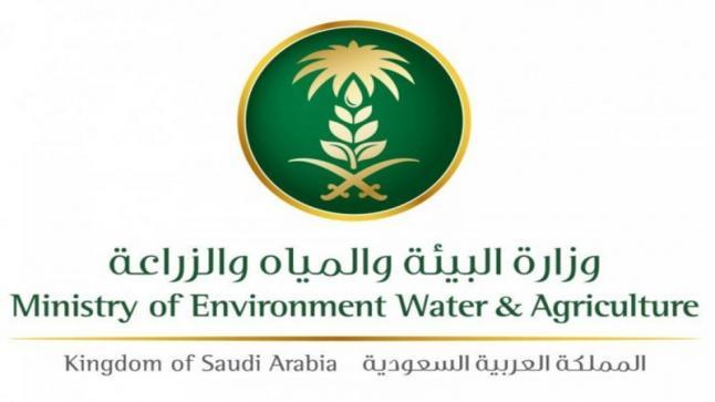 اكتشاف ومعالجة 369 ألف هكتار جديد الجراد الصحراوي في المملكة العربية السعودية
