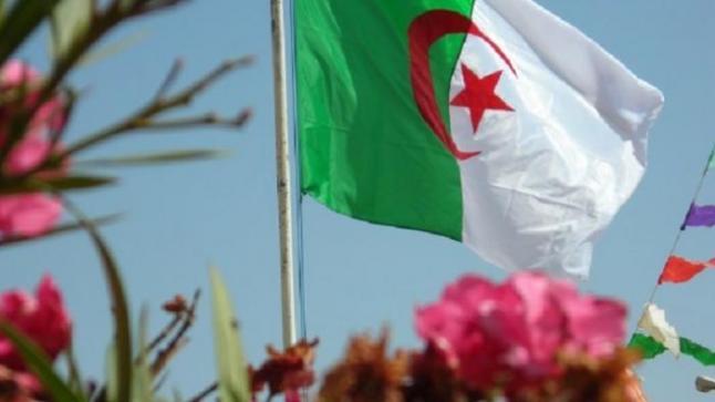 إصدار قانون جديدة بهدف الحد من مشاكل العاملين وتقليل نسبة البطالة من قبل الحكومة الجزائرية