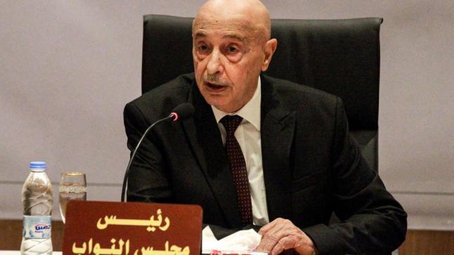 رئيس مجلس النواب الليبي يشيد بدور مصر لحقن الدماء في ليبيا