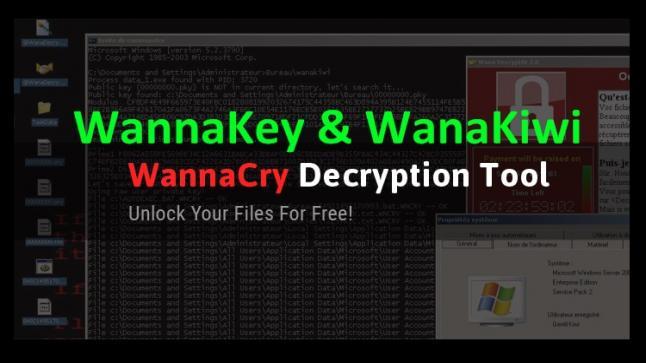 إدارة WannaKey تعمل على إزالة فايروس الفدية WannaCry لكن بنسبة نجاح قليلة جدا