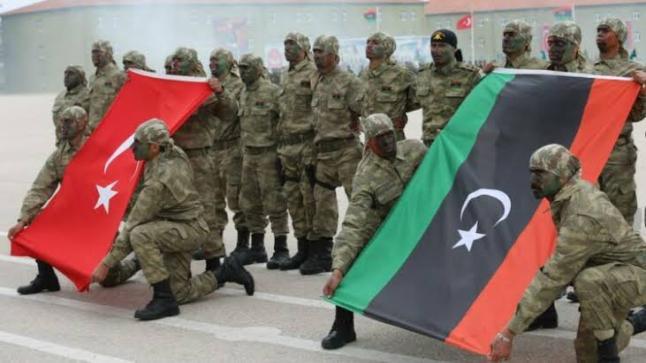 الإمارات : التدخل التركي غير مرغوب فيه داخل العالم العربي